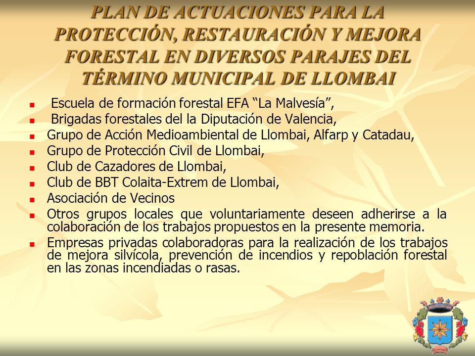 PLAN DE ACTUACIONES PARA LA PROTECCIÓN, RESTAURACIÓN Y MEJORA FORESTAL EN DIVERSOS PARAJES DEL TÉRMINO MUNICIPAL DE LLOMBAI Escuela de formación fores