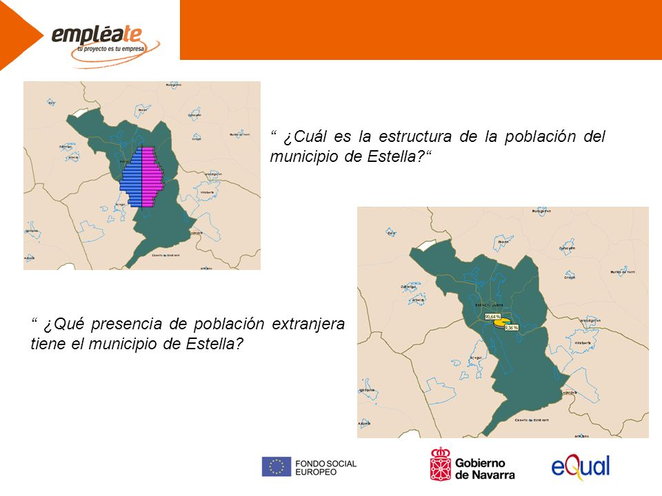 ¿Cuál es la estructura de la población del municipio de Estella.