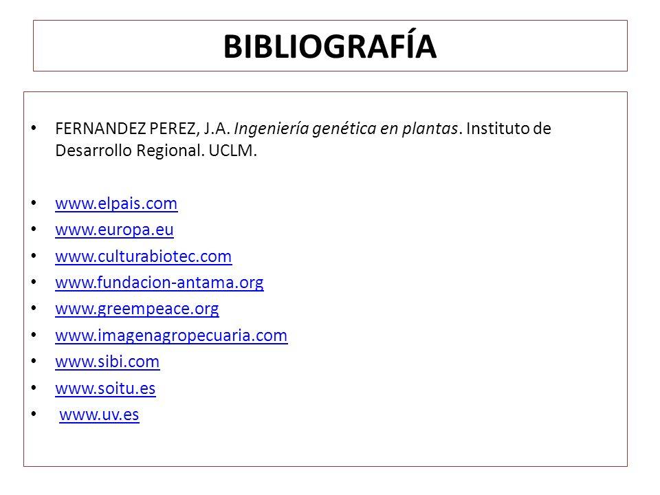 BIBLIOGRAFÍA FERNANDEZ PEREZ, J.A. Ingeniería genética en plantas. Instituto de Desarrollo Regional. UCLM. www.elpais.com www.europa.eu www.culturabio