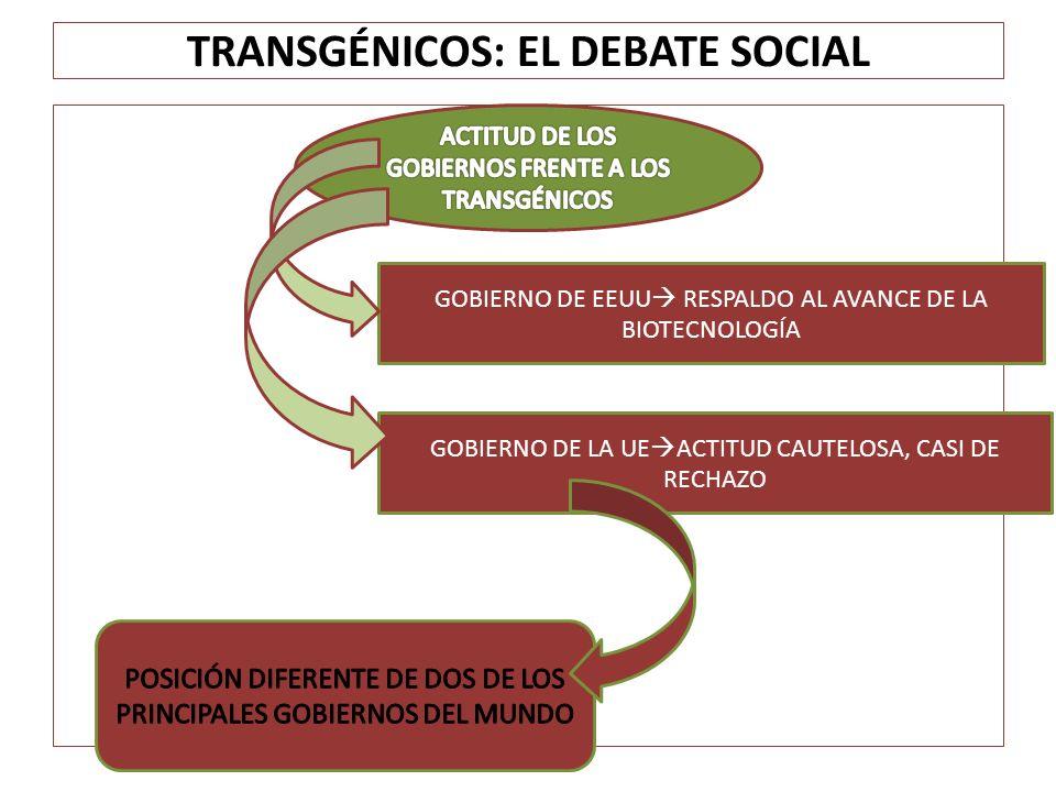 TRANSGÉNICOS: EL DEBATE SOCIAL -PROHIBIDO EL CULTIVO DE ESPECIES TRANSGÉNICAS (EXCEPTO MAÍZ MON 810 Y PATATA ANFLORA) -ADMITIDA LA IMPORTACIÓN DE PRODUCTOS TRANSGÉNICOS (ELEVADA IMPORTACIÓN DE SOJA TRANSGÉNICA PARA ALIMENTACIÓN ANIMAL) PRESIONES COLECTIVOS SOCIALES Y MOVIMIENTOS ECOLOGISTAS