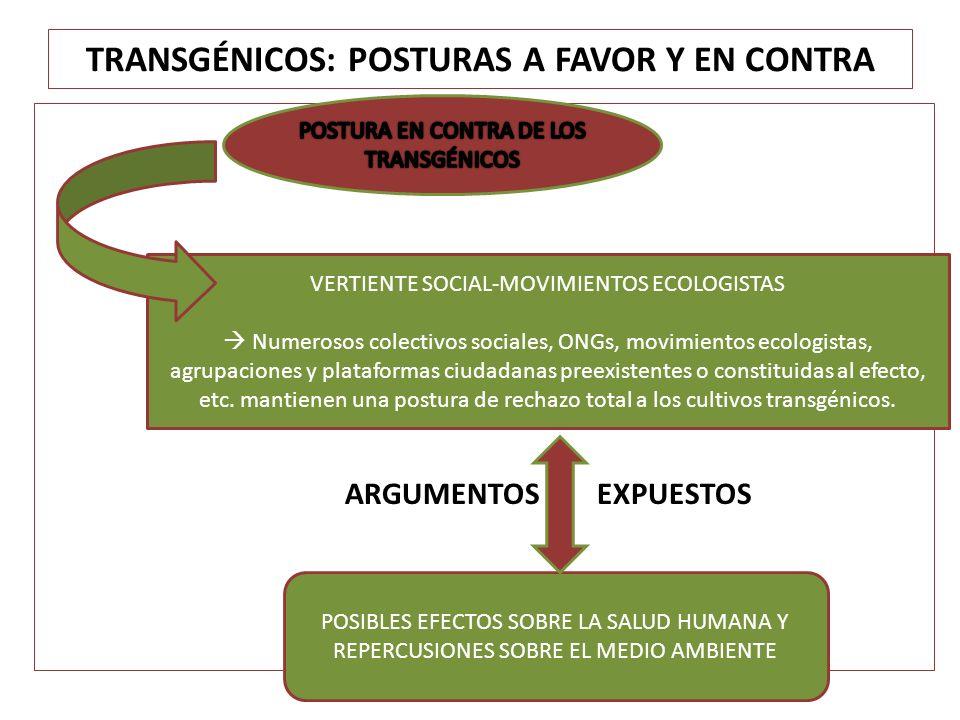 ARGUMENTOS EXPUESTOS VERTIENTE SOCIAL-MOVIMIENTOS ECOLOGISTAS Numerosos colectivos sociales, ONGs, movimientos ecologistas, agrupaciones y plataformas