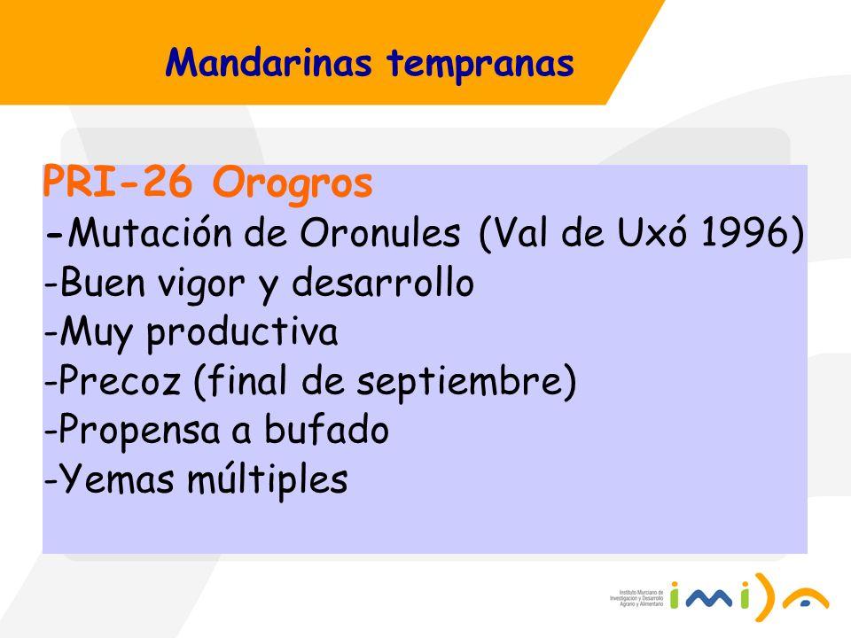 Mandarinas tempranas PRI-26 Orogros -Mutación de Oronules (Val de Uxó 1996) -Buen vigor y desarrollo -Muy productiva -Precoz (final de septiembre) -Pr