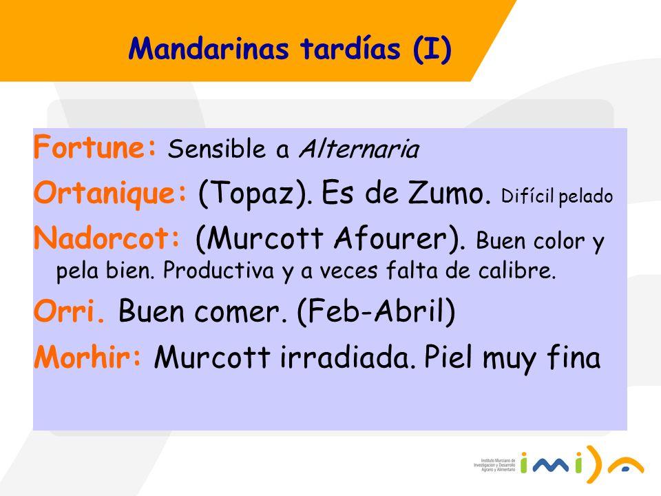 Mandarinas tardías (I) Fortune: Sensible a Alternaria Ortanique: (Topaz). Es de Zumo. Difícil pelado Nadorcot: (Murcott Afourer). Buen color y pela bi