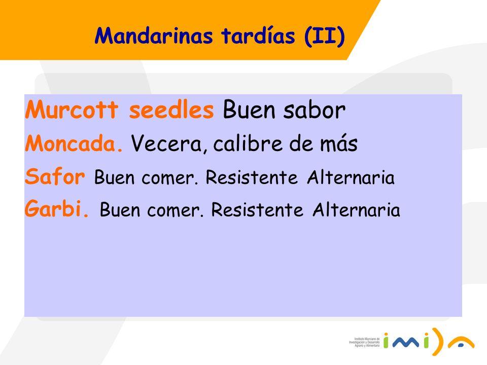Mandarinas tardías (II) Murcott seedles Buen sabor Moncada. Vecera, calibre de más Safor Buen comer. Resistente Alternaria Garbi. Buen comer. Resisten