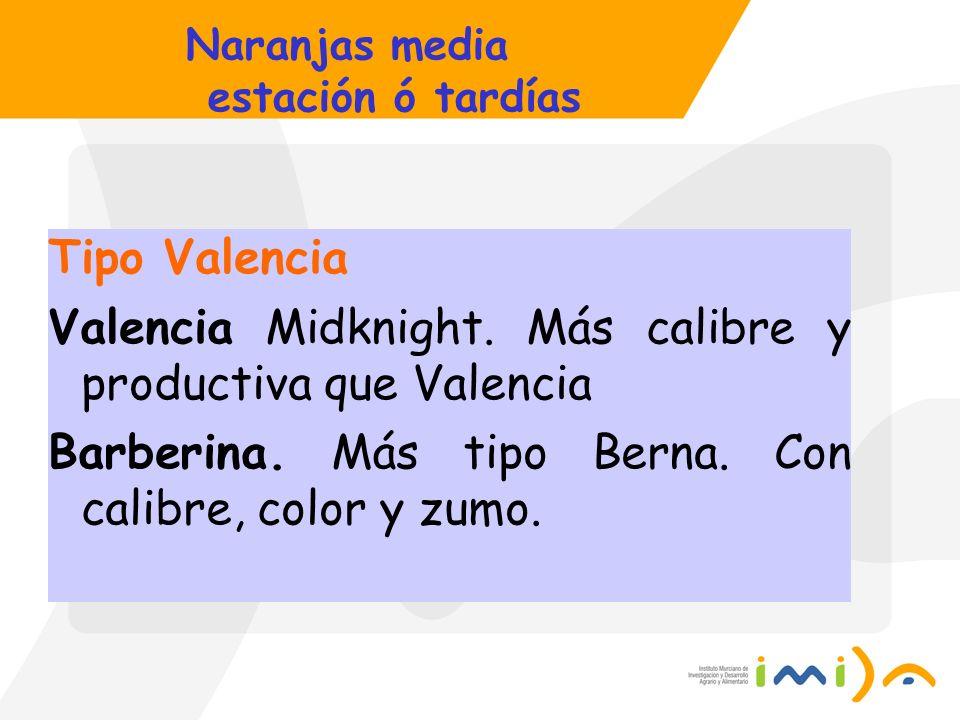 Naranjas media estación ó tardías Tipo Valencia Valencia Midknight. Más calibre y productiva que Valencia Barberina. Más tipo Berna. Con calibre, colo