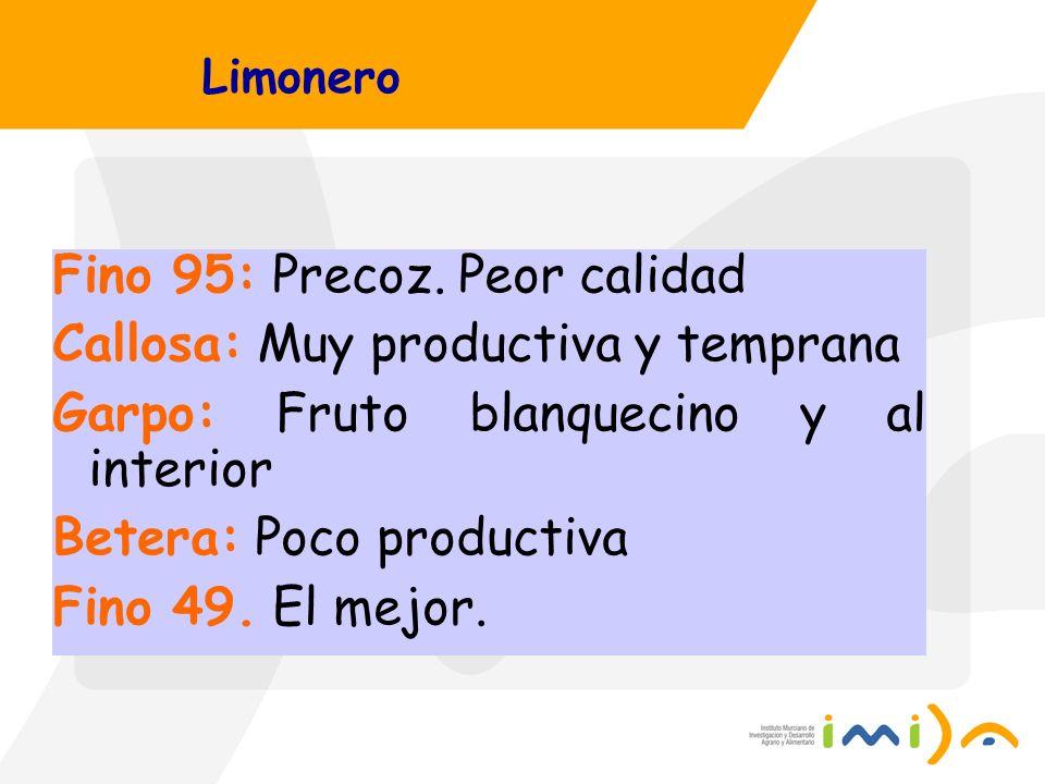 Limonero Fino 95: Precoz. Peor calidad Callosa: Muy productiva y temprana Garpo: Fruto blanquecino y al interior Betera: Poco productiva Fino 49. El m