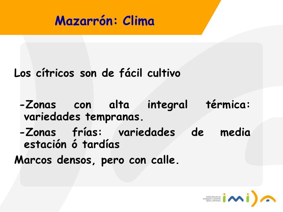 Mazarrón: Clima Los cítricos son de fácil cultivo -Zonas con alta integral térmica: variedades tempranas. -Zonas frías: variedades de media estación ó