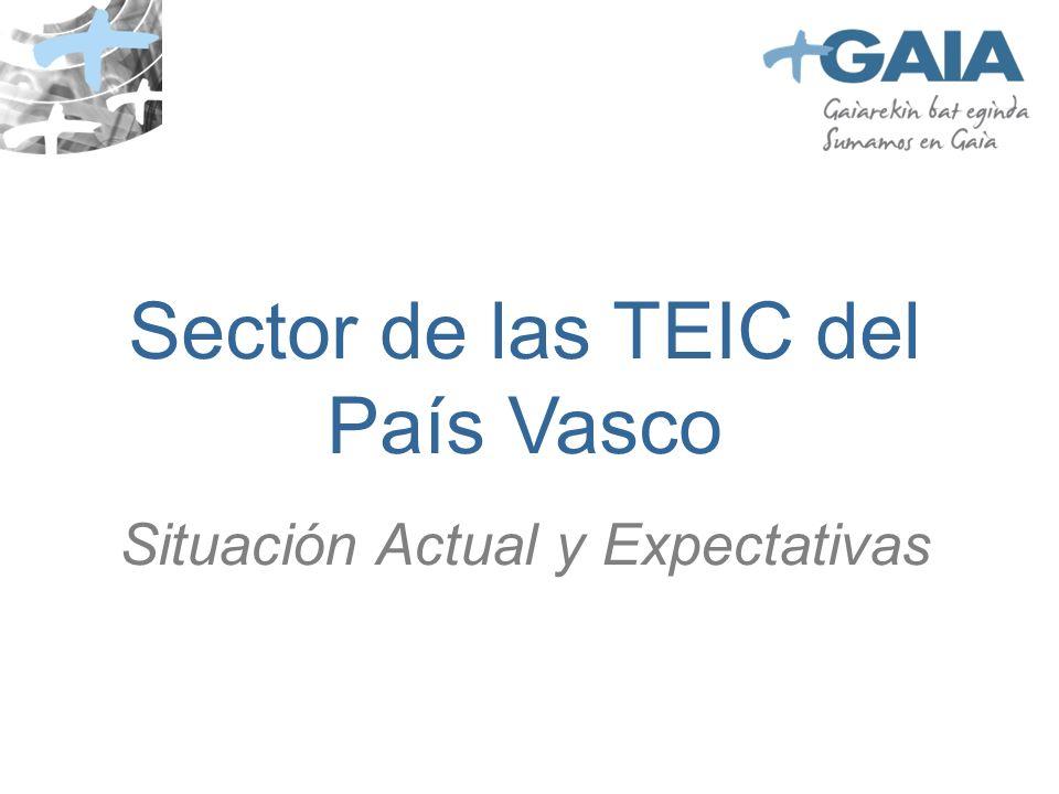 Sector de las TEIC del País Vasco Situación Actual y Expectativas