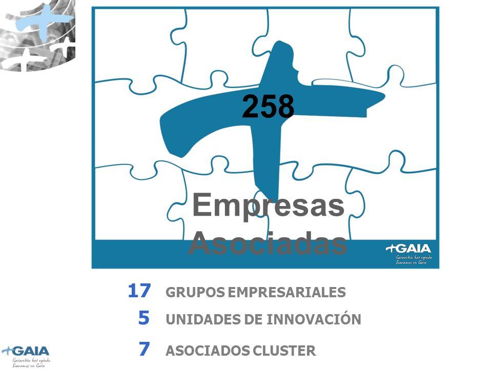 258 Empresas Asociadas 17 GRUPOS EMPRESARIALES 5 UNIDADES DE INNOVACIÓN 7 ASOCIADOS CLUSTER