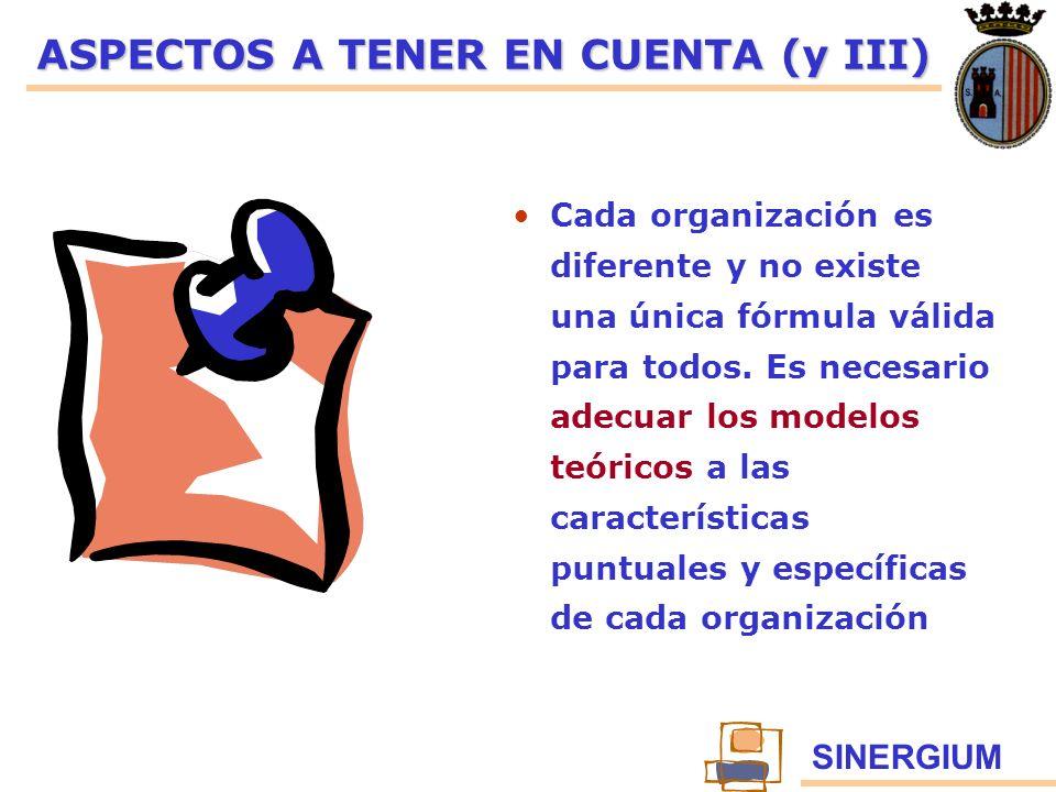 SINERGIUM ASPECTOS A TENER EN CUENTA (y III) Cada organización es diferente y no existe una única fórmula válida para todos. Es necesario adecuar los