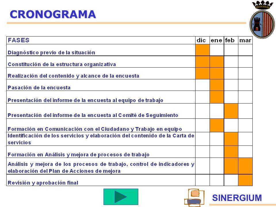 SINERGIUMCRONOGRAMA