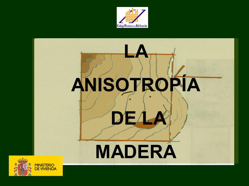 PRODUCTOS DE LA MADERA, ADHESIVOS Y UNIONES Clases resistentes Madera maciza (Aserrada) Resinosa (confieras) C (14-40) N/mm 2 Frondosas D (30-70) N/mm 2 Laminada encoladahomogénea GL-x-h (24-36) combinada GL-x-c (24-36) MicrolaminadaA definir por el fabricante sin serie tipificada Tablero estructural Adhesivos Uniones TIPOS DE TABLEROS De partículas estructuralesPara ambiente seco Para ambiente húmedo De alta prestaciónPara ambiente seco Para ambiente húmedo De fibrasDuros Semiduros Fabricados en seco Contrachapados Cap.4 LOS MATERIALES 1 ANEJOS C y D