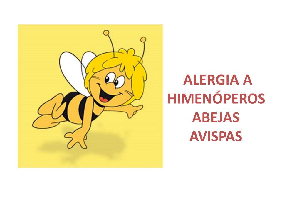 ALERGIA A HIMENÓPEROS ABEJAS AVISPAS