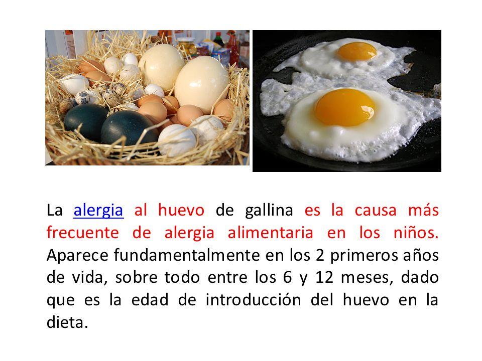 La alergia al huevo de gallina es la causa más frecuente de alergia alimentaria en los niños. Aparece fundamentalmente en los 2 primeros años de vida,