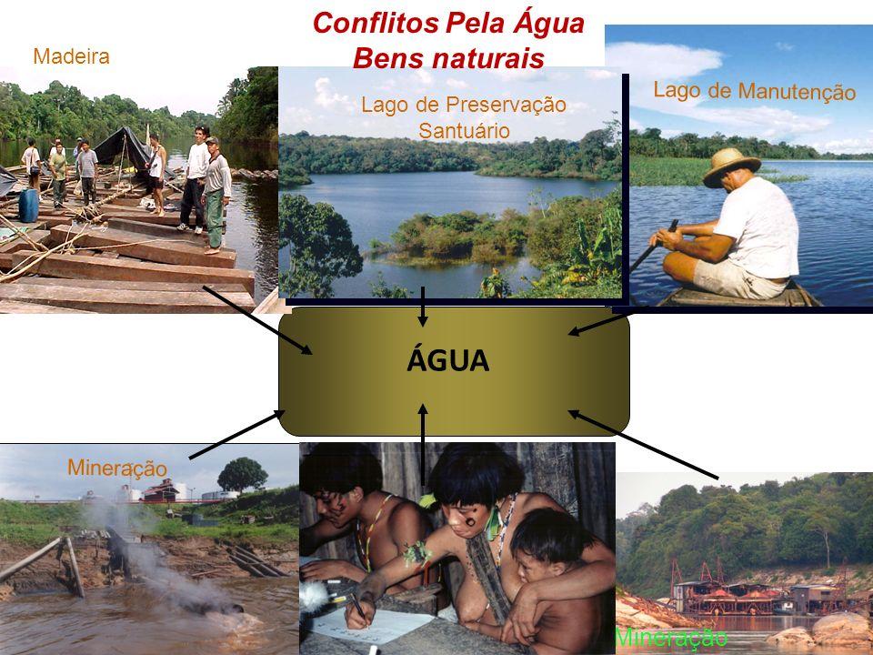 Conflitos Pela Terra - Territórios Bens naturais TERRA Madeireiras Pecuária Mineração Urbanização Indígenas Agricultura familiar RDS Piagaçu Purus U.C