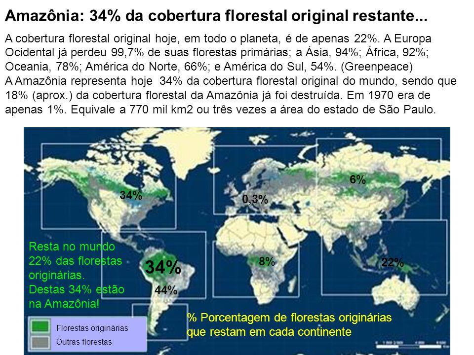 Amazônia: 34% da cobertura florestal original restante...