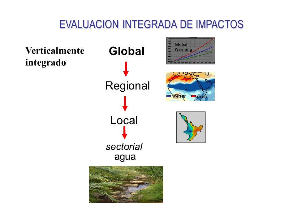 Global EVALUACION INTEGRADA DE IMPACTOS Regional Local sectorial wetter drier Verticalmente integrado Global Warming agua
