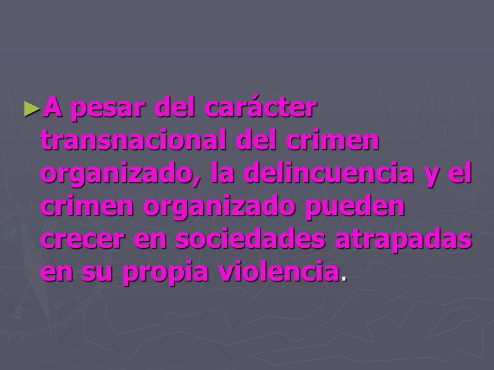 A pesar del carácter transnacional del crimen organizado, la delincuencia y el crimen organizado pueden crecer en sociedades atrapadas en su propia vi