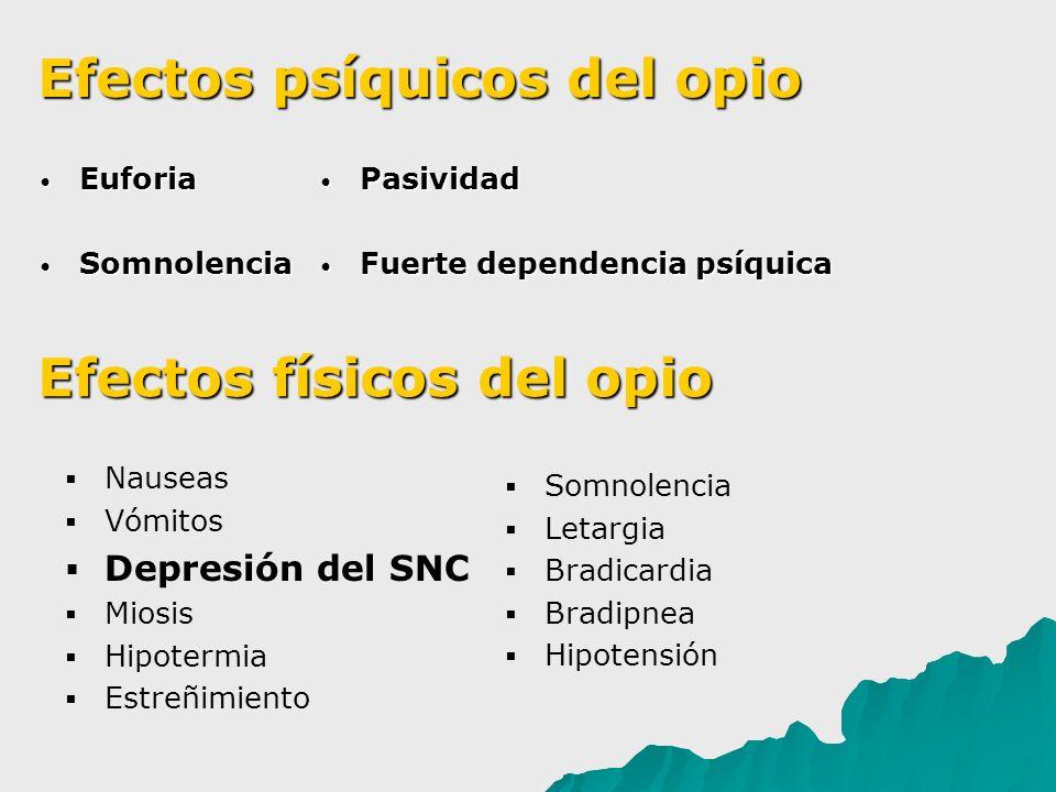 Euforia Euforia Somnolencia Somnolencia Nauseas Vómitos Depresión del SNC Miosis Hipotermia Estreñimiento Pasividad Pasividad Fuerte dependencia psíqu