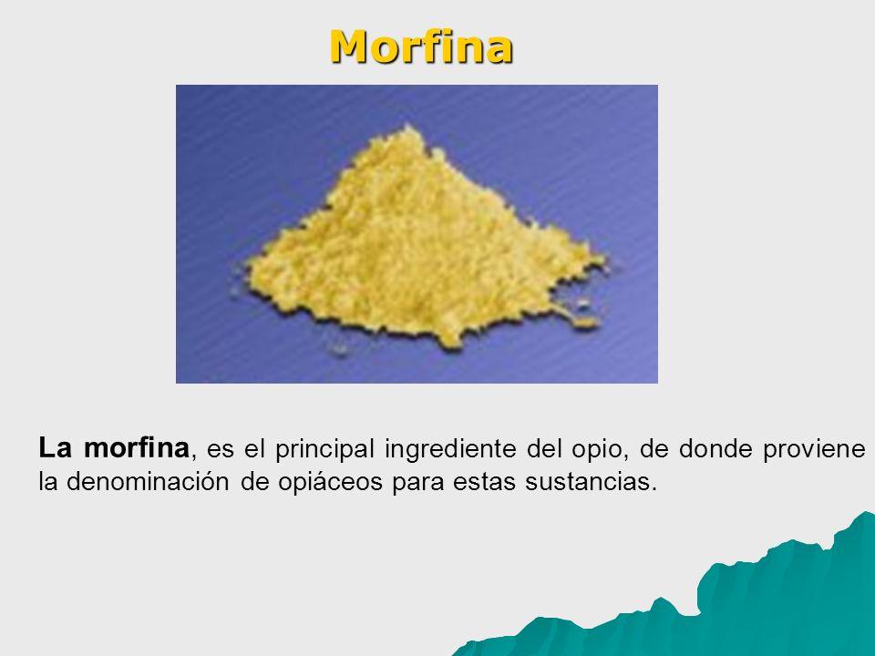La morfina, es el principal ingrediente del opio, de donde proviene la denominación de opiáceos para estas sustancias. Morfina