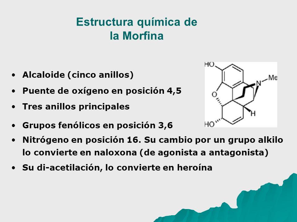 Estructura química de la Morfina Alcaloide (cinco anillos) Puente de oxígeno en posición 4,5 Tres anillos principales Grupos fenólicos en posición 3,6