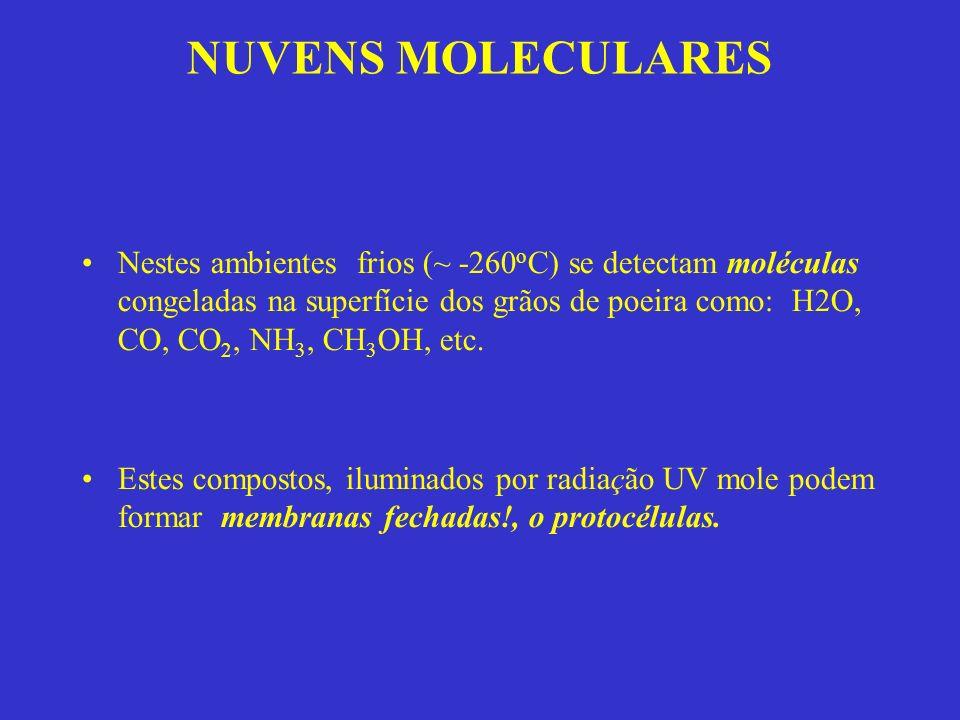 NUVENS MOLECULARES Nestes ambientes frios (~ -260 o C) se detectam moléculas congeladas na superfície dos grãos de poeira como: H2O, CO, CO 2, NH 3, CH 3 OH, etc.
