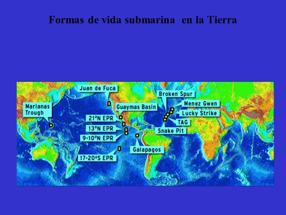 Formas de vida submarina en la Tierra