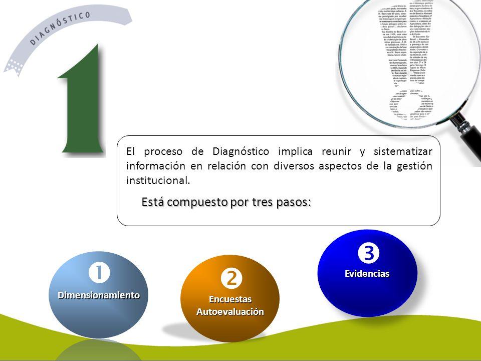 El proceso de Diagnóstico implica reunir y sistematizar información en relación con diversos aspectos de la gestión institucional. Está compuesto por