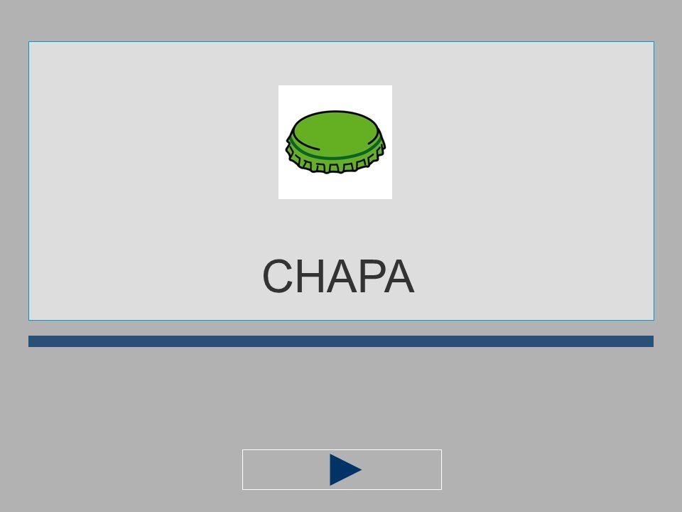 CH A O M P I CHAP... ?