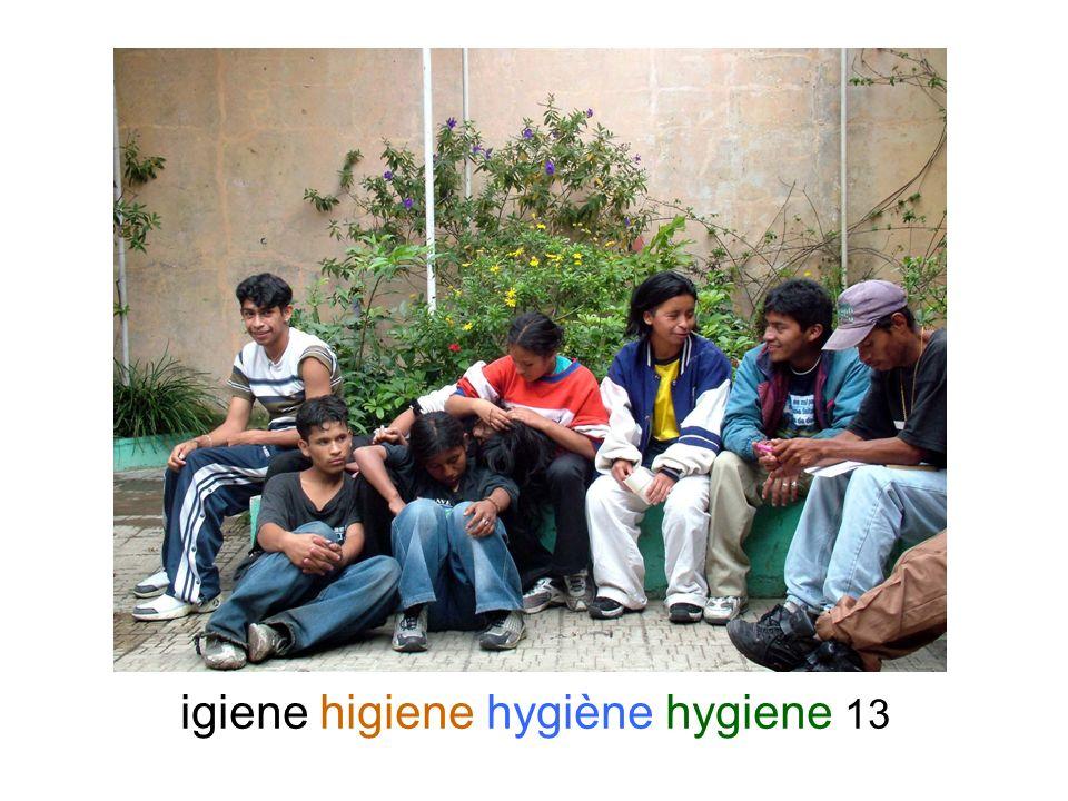 igiene higiene hygiène hygiene 13