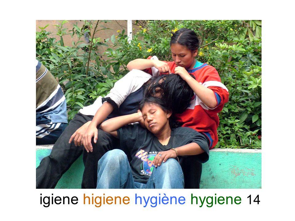 igiene higiene hygiène hygiene 14