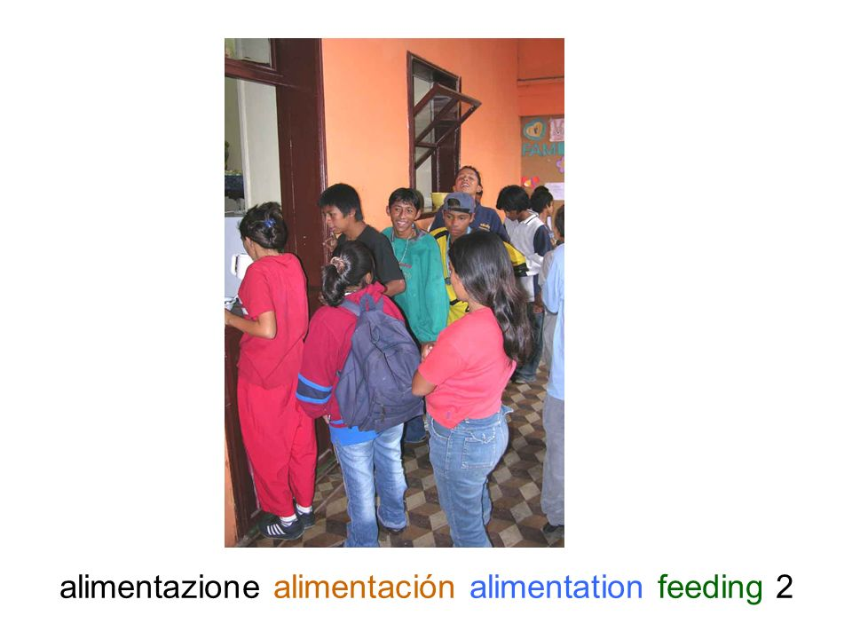 alimentazione alimentación alimentation feeding 13
