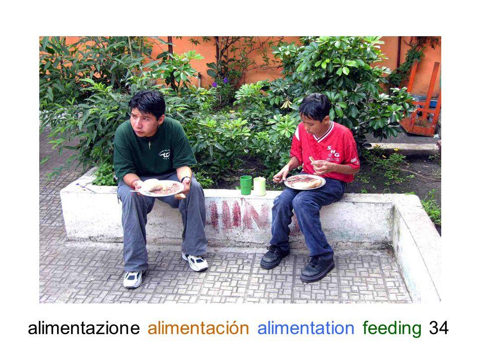 alimentazione alimentación alimentation feeding 34