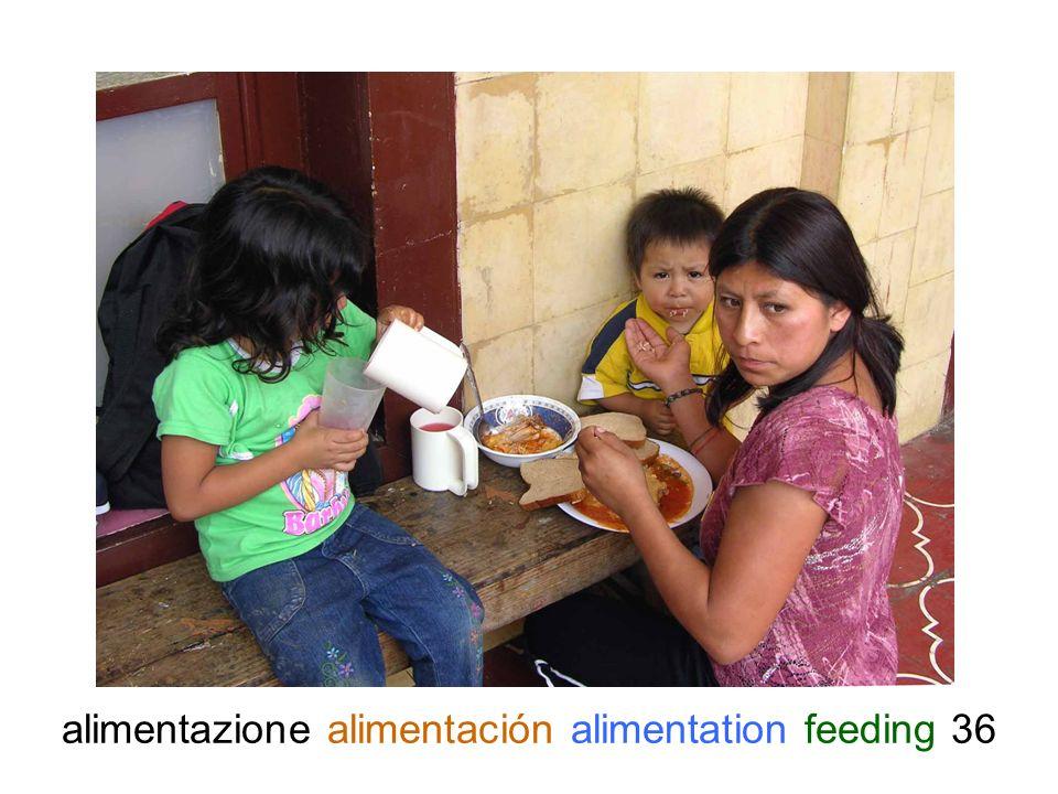 alimentazione alimentación alimentation feeding 36