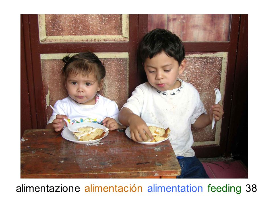 alimentazione alimentación alimentation feeding 38