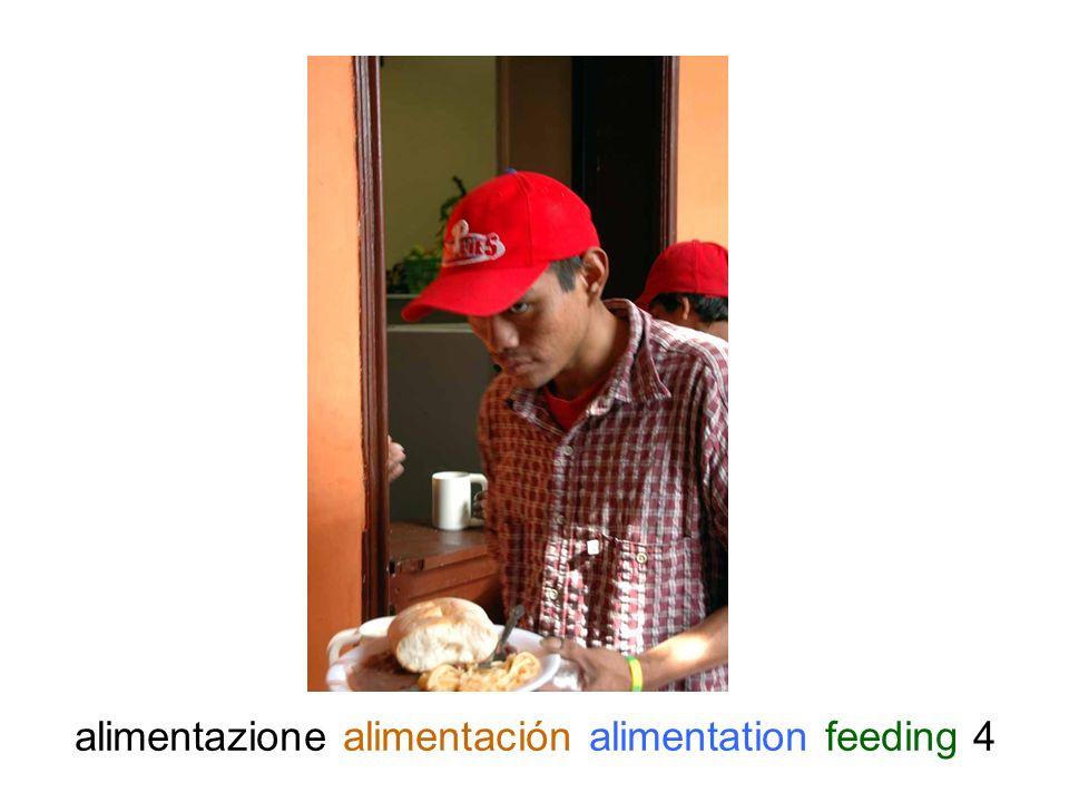 alimentazione alimentación alimentation feeding 5