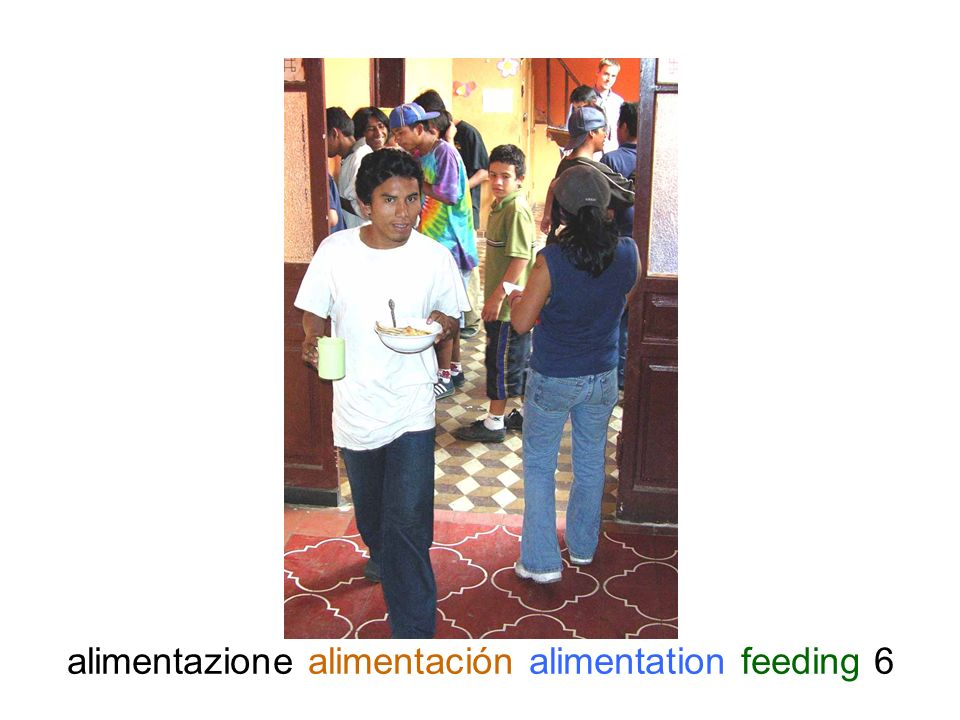 alimentazione alimentación alimentation feeding 6