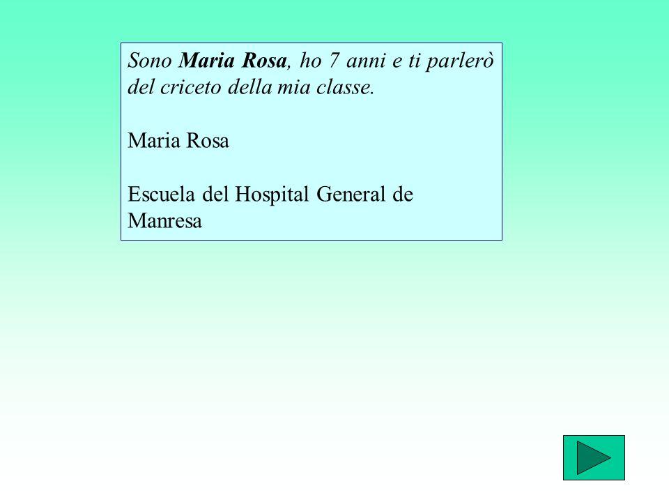 Sono Maria Rosa, ho 7 anni e ti parlerò del criceto della mia classe.