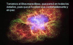 Tenemos el Dios maravilloso, que pensó en todos los detalles, para que el hombre viva confortablemente y en paz.