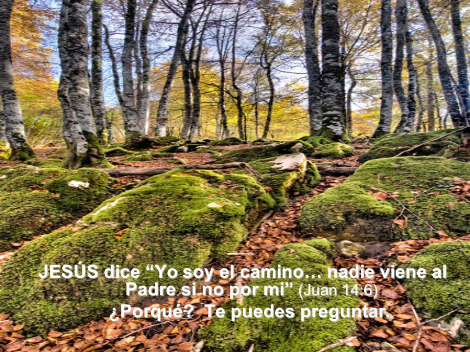 JESÚS dice Yo soy el camino… nadie viene al Padre si no por mi (Juan 14:6) ¿Porqué? Te puedes preguntar. ¿Porqué? Te puedes preguntar.