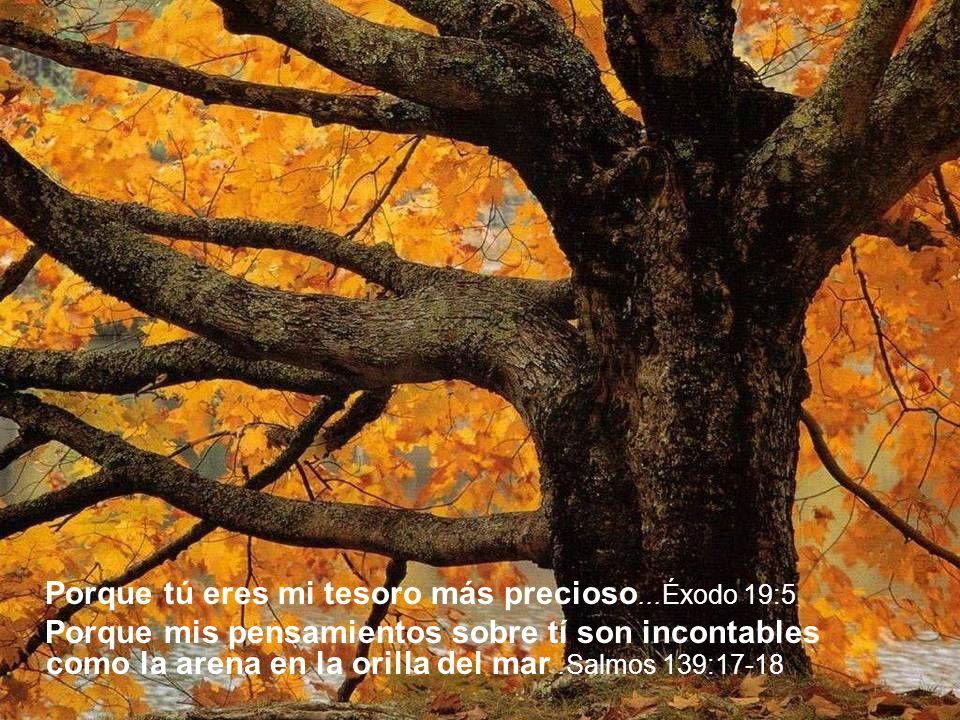 Porque si me buscas con todo tu corazón, me encontrarás Deuteronomio 4:29 Porque cuando tu corazón está quebrantado, Yo estoy cerca de ti Salmos 34:18