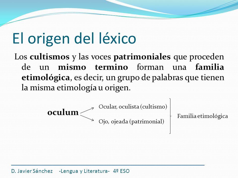 El origen del léxico Los cultismos y las voces patrimoniales que proceden de un mismo termino forman una familia etimológica, es decir, un grupo de pa