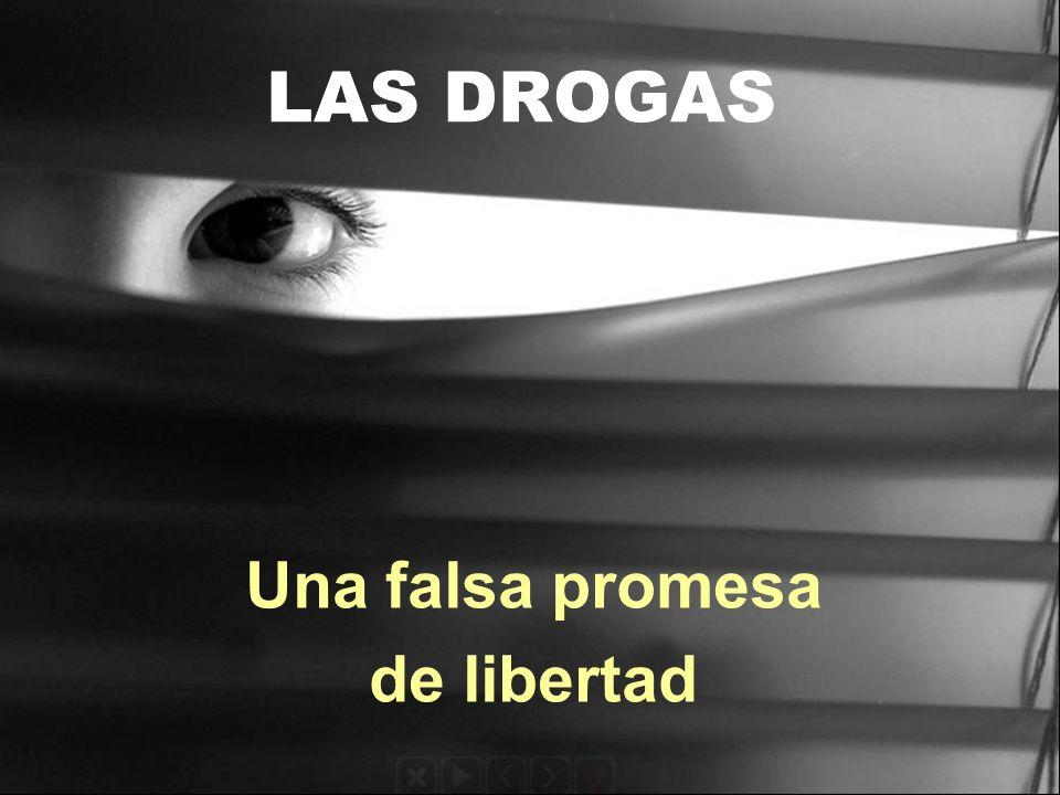 LAS DROGAS Una falsa promesa de libertad