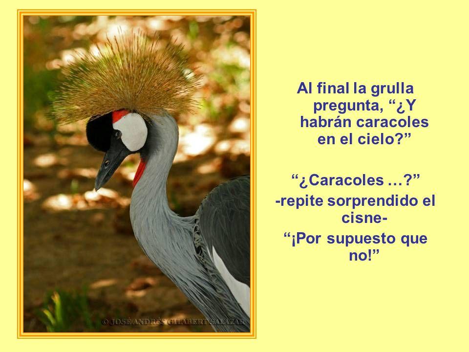 Al final la grulla pregunta, ¿Y habrán caracoles en el cielo? ¿Caracoles …? -repite sorprendido el cisne- ¡Por supuesto que no!