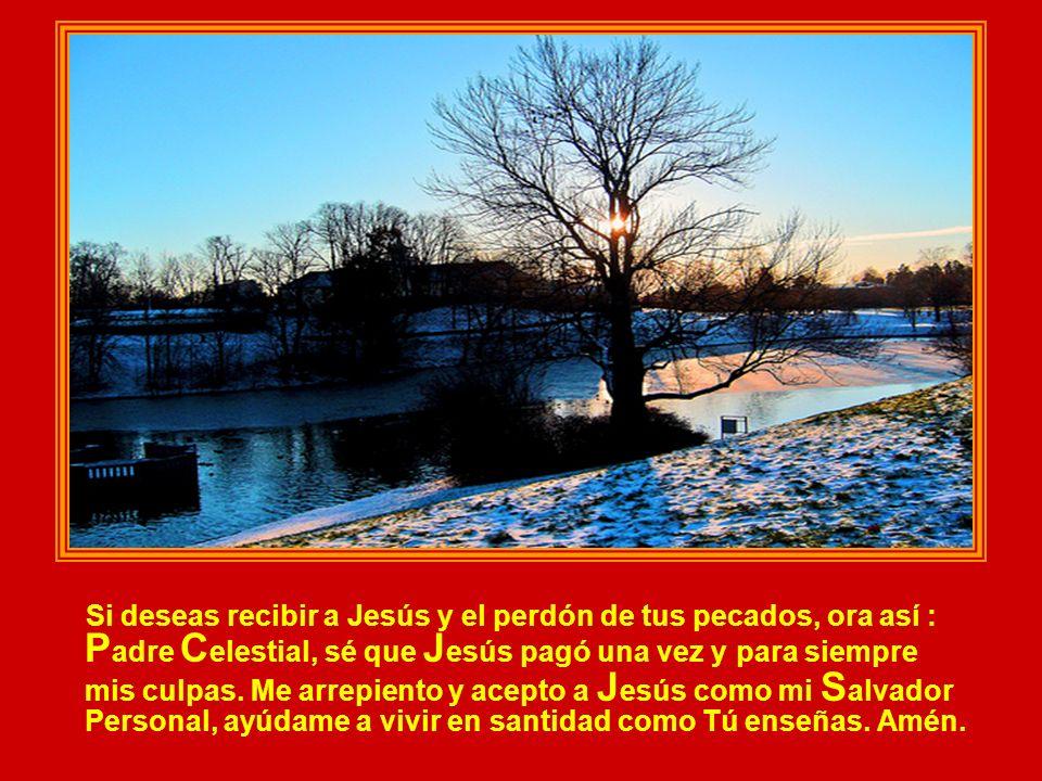 Si deseas recibir a Jesús y el perdón de tus pecados, ora así : P adre C elestial, sé que J esús pagó una vez y para siempre mis culpas.