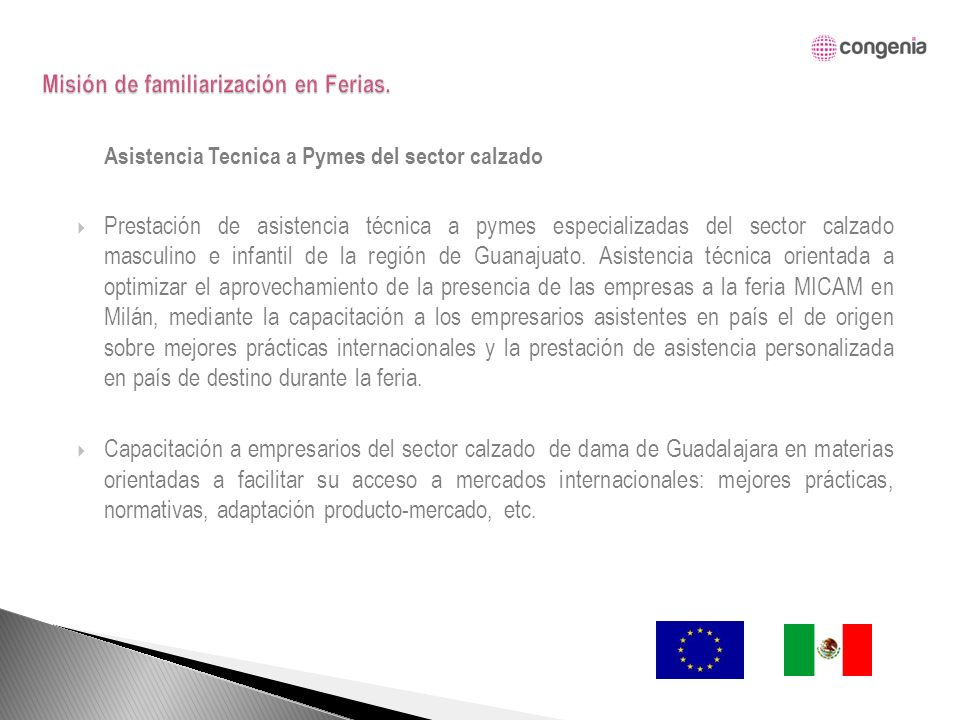 Asistencia Tecnica a Pymes del sector calzado Prestación de asistencia técnica a pymes especializadas del sector calzado masculino e infantil de la región de Guanajuato.