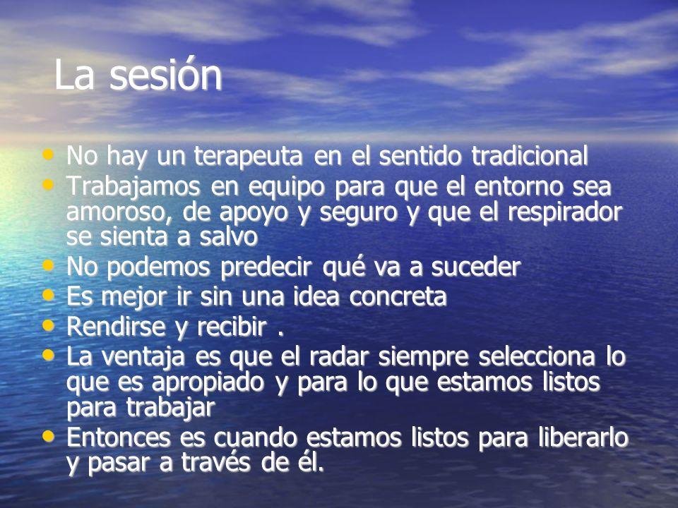 La sesión La sesión No hay un terapeuta en el sentido tradicional No hay un terapeuta en el sentido tradicional Trabajamos en equipo para que el entor