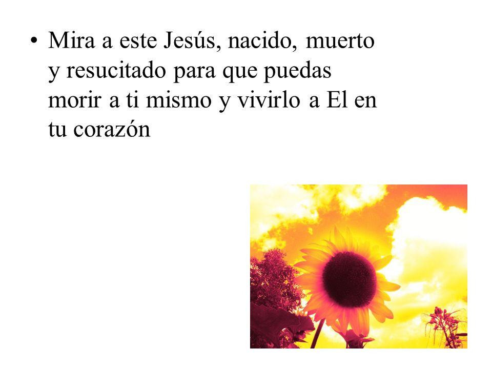 Mira a este Jesús, nacido, muerto y resucitado para que puedas morir a ti mismo y vivirlo a El en tu corazón
