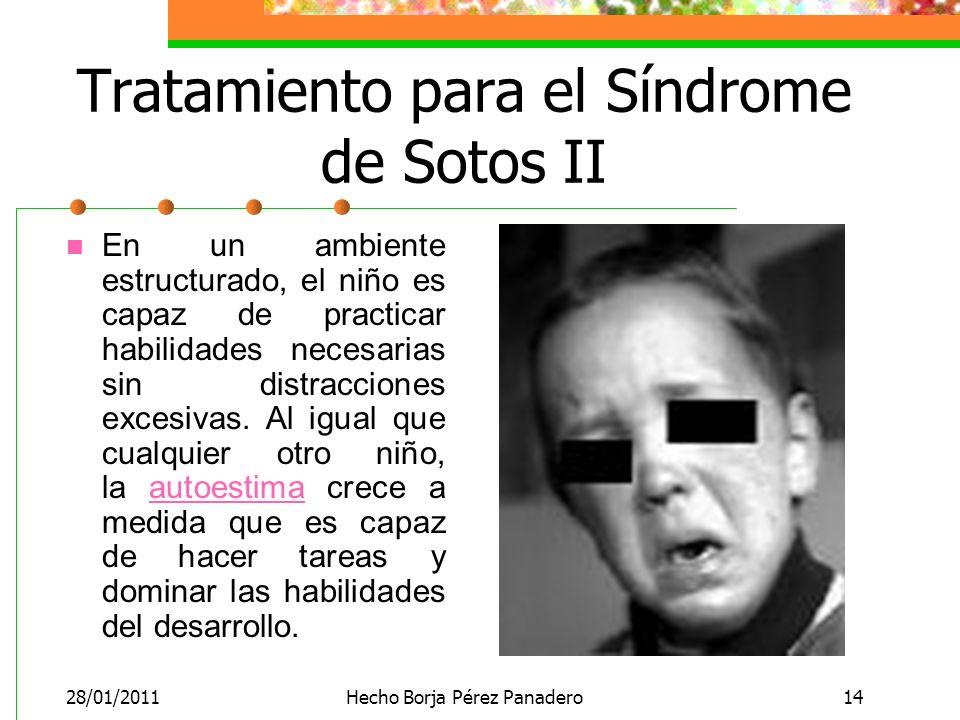 28/01/2011Hecho Borja Pérez Panadero14 Tratamiento para el Síndrome de Sotos II En un ambiente estructurado, el niño es capaz de practicar habilidades necesarias sin distracciones excesivas.