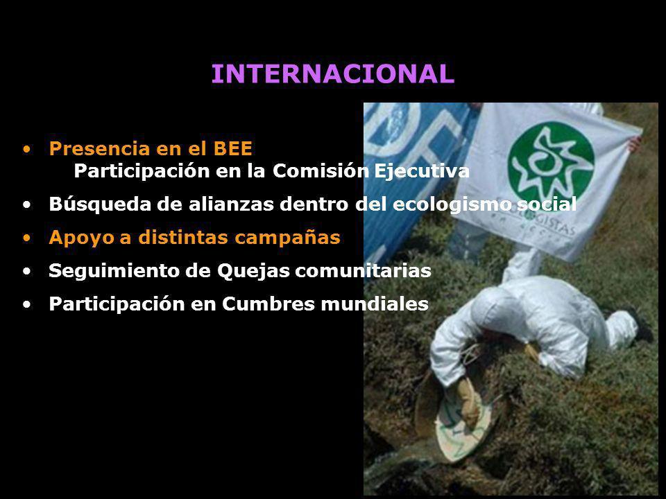 Presencia en el BEE Participación en la Comisión Ejecutiva Búsqueda de alianzas dentro del ecologismo social Apoyo a distintas campañas Seguimiento de